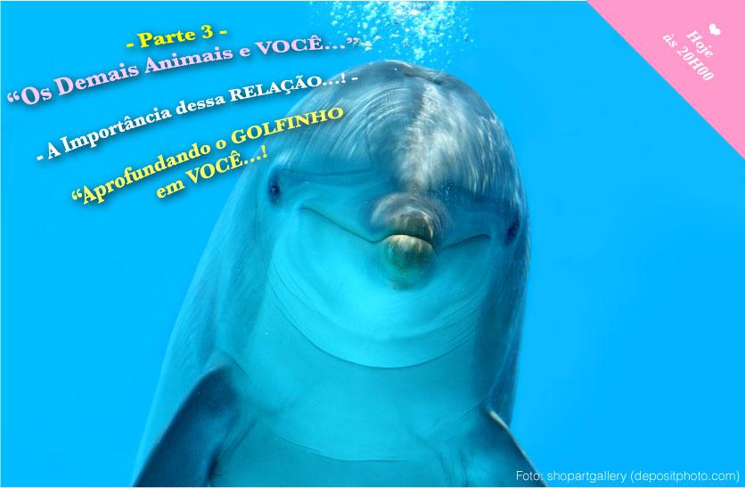 20141110 ik voce e animais parte3 golfinho