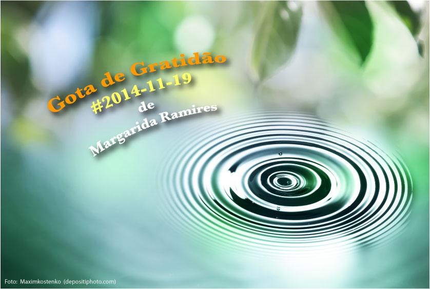 20141119 gograt margaridaramires