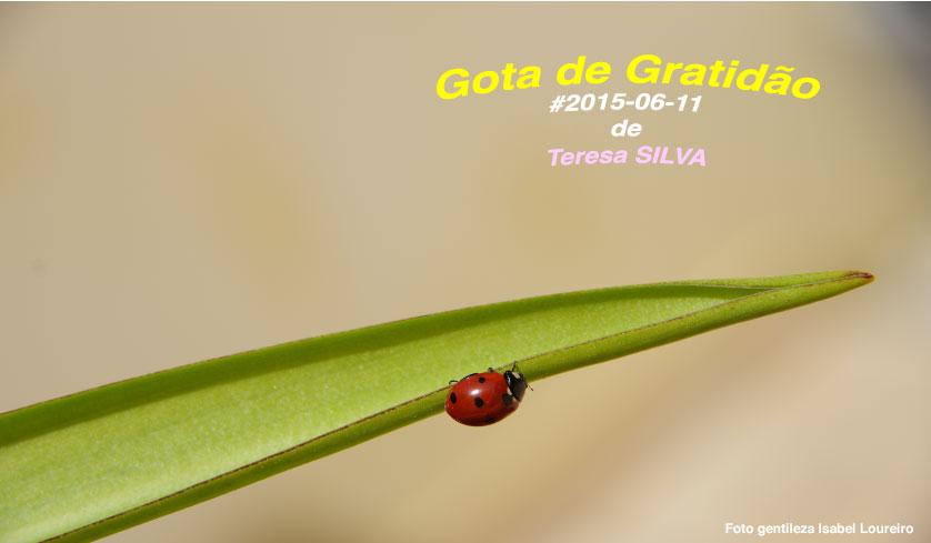 20150610 gograt teresasilva