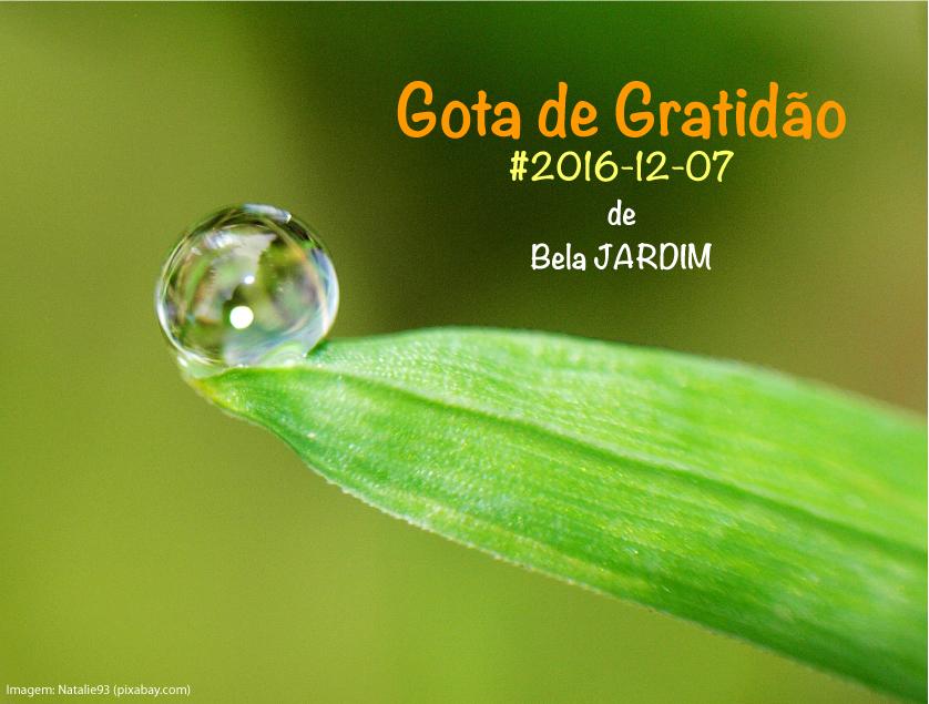 20161207 GoGrat Bela JARDIM Muito obrigada por Tudo